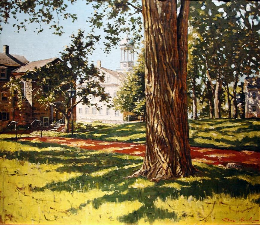 Old Moravian Tree